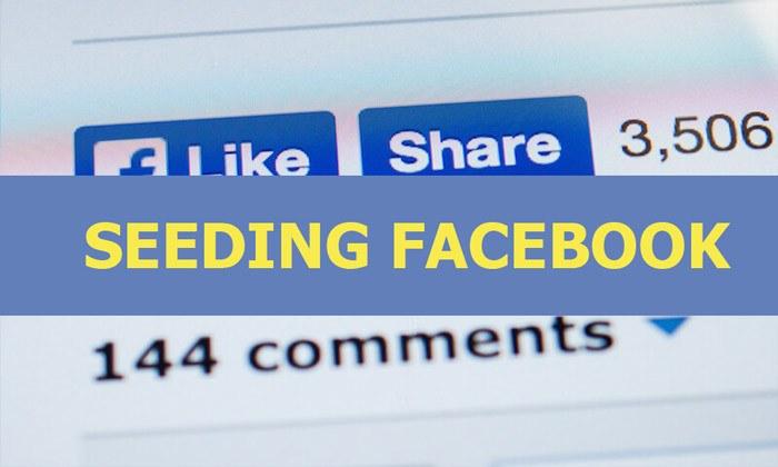 Seeding tăng tương tác fanpage facebook