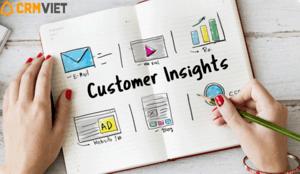 cách tìm insight khách hàng